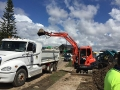5 tonne excavator loading up truck - Redcliffe Brisbane