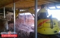 Under House Excavation - Nundah Brisbane